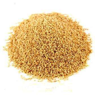 POPPY SEED - POSTO - BEST QUALITY - 50 GM