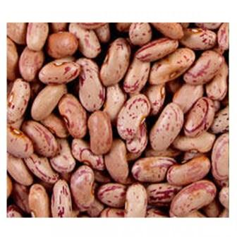 WHITE RAJMA - 250 GM