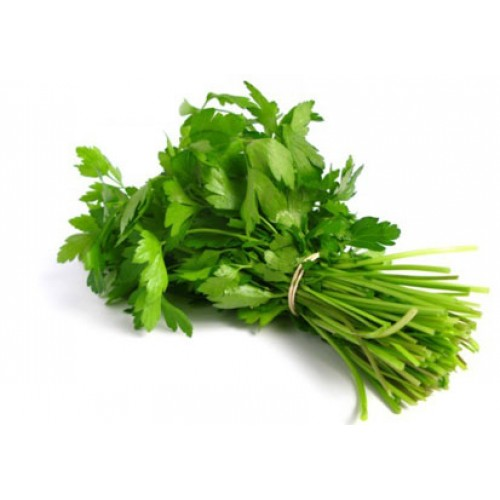 CORIANDER LEAVES (DHANIA / DHONE PATA) - 1 BUNDLE