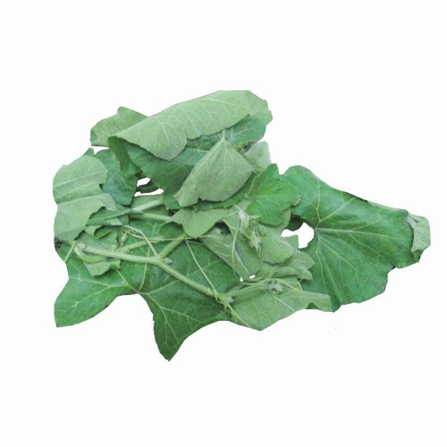BOTTLE GOURD LEAVES (LAU SAAG / SHAAK) - 1 BUNDLE