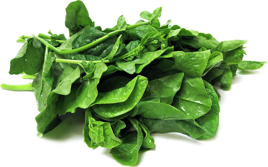 CEYLON SPINACH (PUI SAAG / SHAAK) - 500 GM