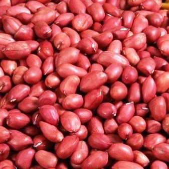 RAW PEANUTS - CHINA BADAM - MUMFALI - RED - 250 GM
