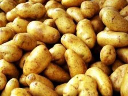 NEW POTATO - NOTUN NATUN ALU - 1 KG