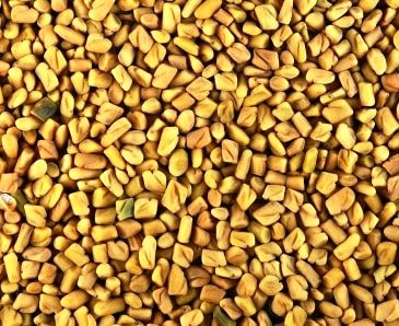 METHI FENUGREEK SEEDS - BEST QUALITY - 250 GM